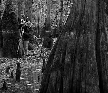 Join us today at 11AM for an artist lecture by #ExperimentalFilmmaker and #ContemporarySculptor Adam Hogan. Free and open to the public. [image - @hoganadams on site filming Silent Forest: Return. On view @meadowsmuseum] #318ART #contemporaryfilm #nonnarrativefilm #contemporarysculpture #meadows318 #bayou #bayouart