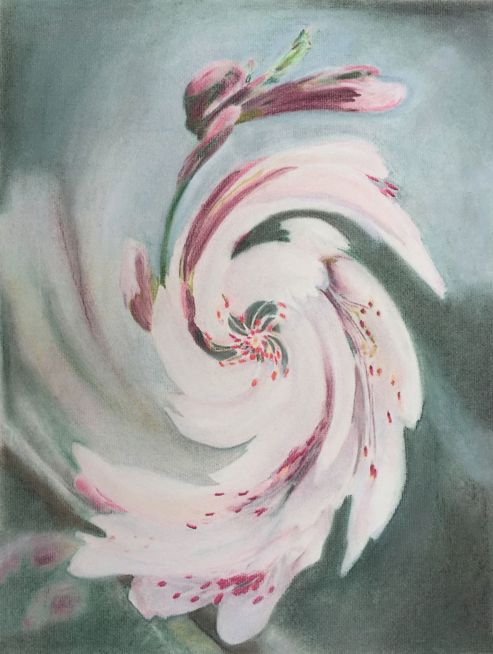 "Grace Goldman '18, Fort Worth Country Day AP Studio Art: 2-D Design  Floral Twist  2017 Pastel 22"" x 18"""