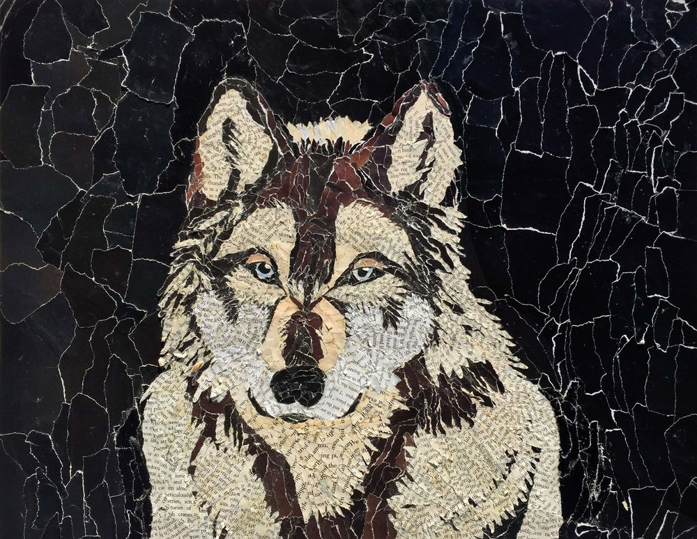 """Peri Huling '19, Fort Worth Country Day Painting & Drawing II  Wolf  2018 Magazine and book pages 13"""" x 17"""""""