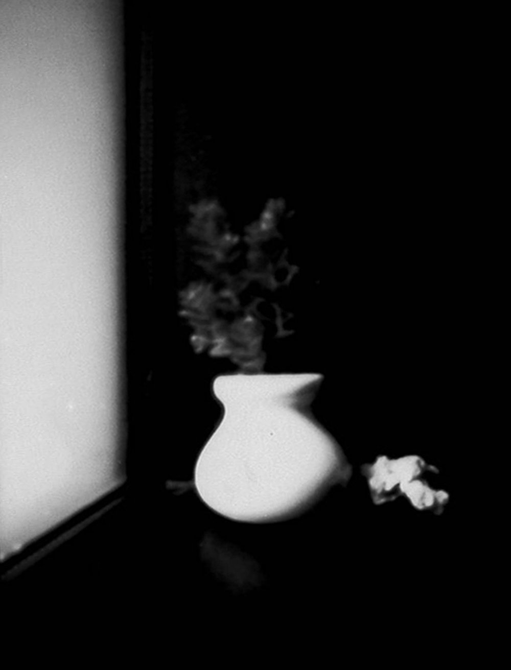 """Eden Harveson '19, Fort Worth Country Day Art Fundamentals  Still Life with Potted Plant  2016 Pinhole photograph 3"""" x 2.25"""""""