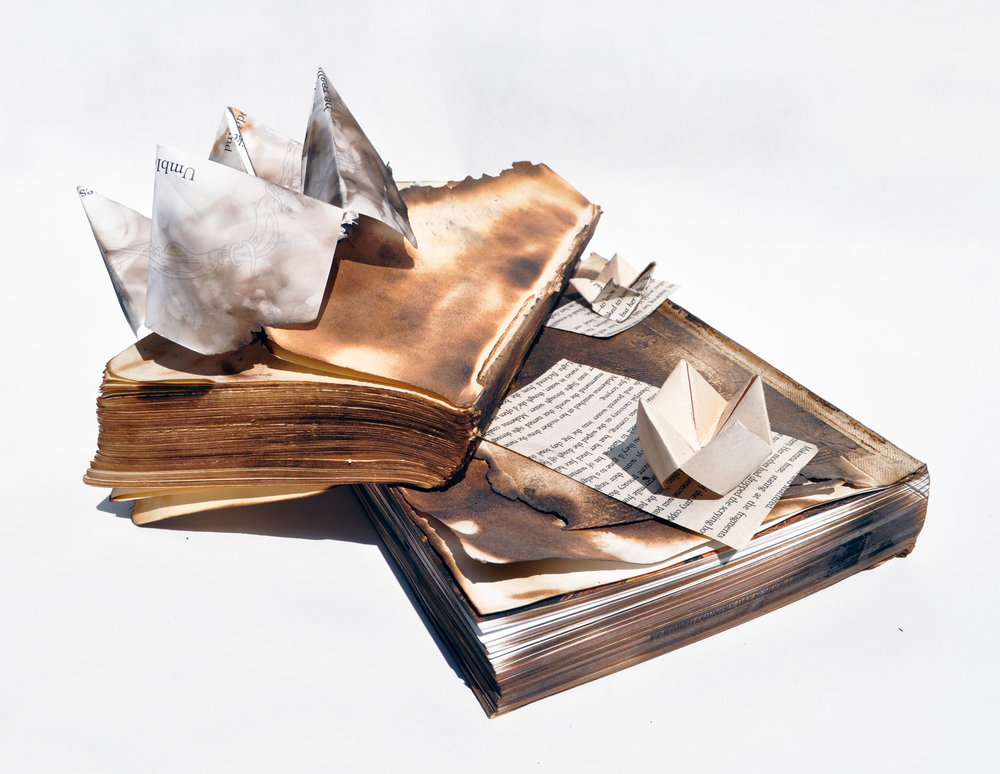 "Reagan Smith '17, Fort Worth Country Day Art Fundamentals  Beautiful Rebellion  2014 Charred books, book pages, and origami 6"" x 12"" x 10.5"""