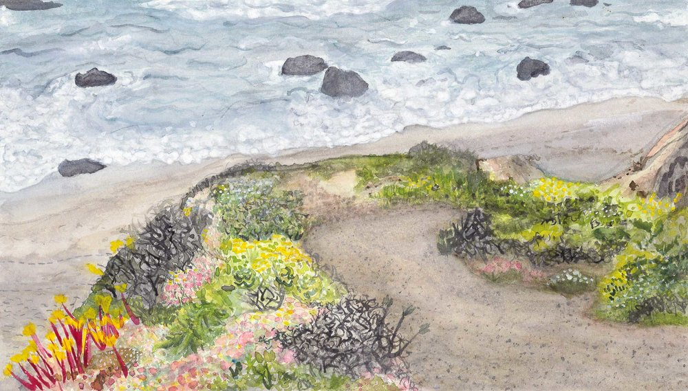 "Grace Goldman '18, Fort Worth Country Day AP Studio Art: 2-D Design  Patchy Shore  2017 Watercolor 7.5"" x 13"""