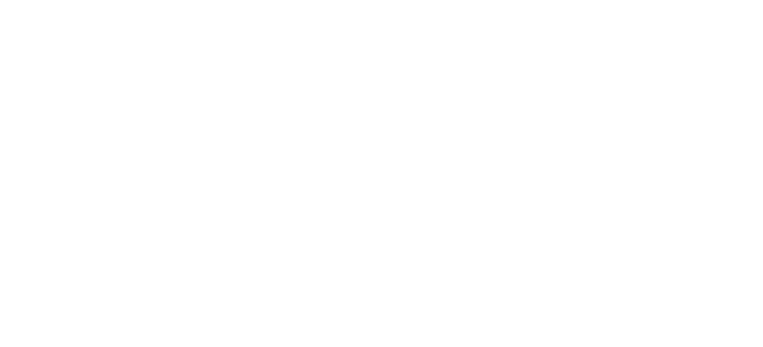 Liquid Analytics - Helping Businesses Successfully Leverage AI