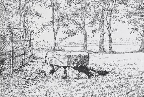 Drawing of Knockmaree by William C. Borlase, in Philip Powell's (2012)  Of Druids Altars & Giants Graves .