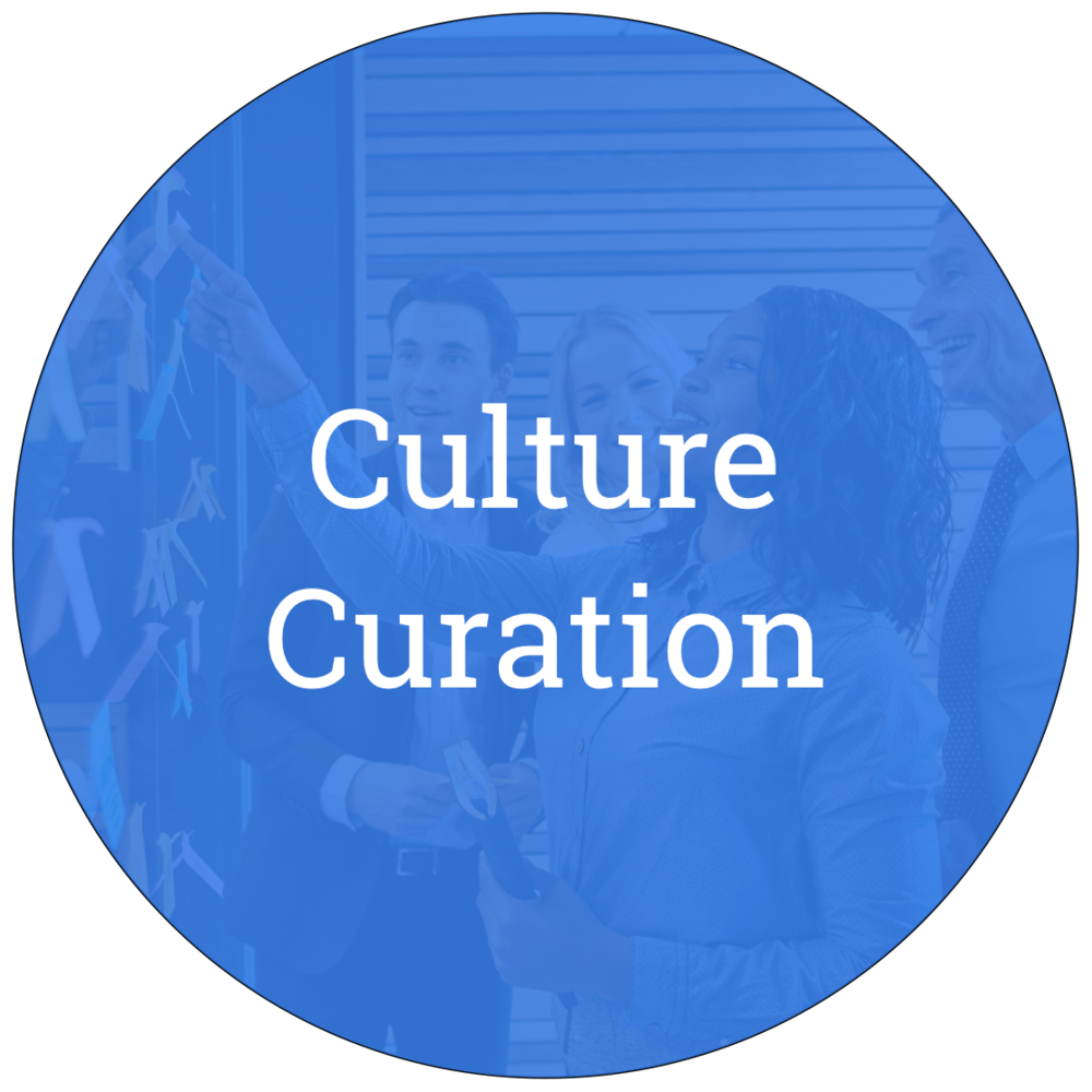 Culture Curation Circle .png
