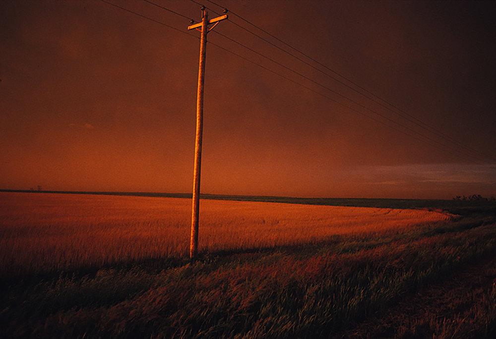 telephone pole.jpg