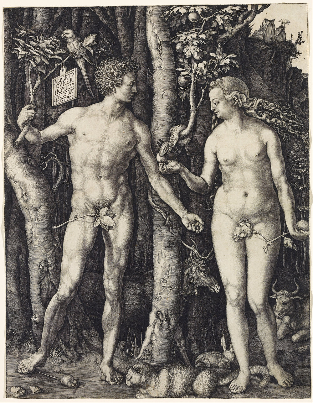 "Albrecht Dürer.  Adam and Eve . Engraving. 9 7/8 x 7 7/8"". 1504."