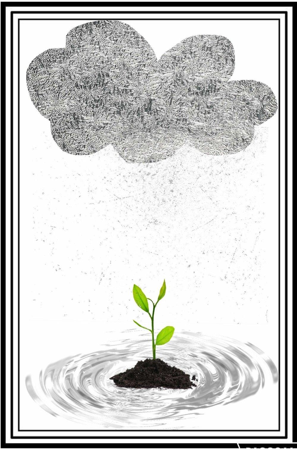 baby-tree-e1466471134598.jpg
