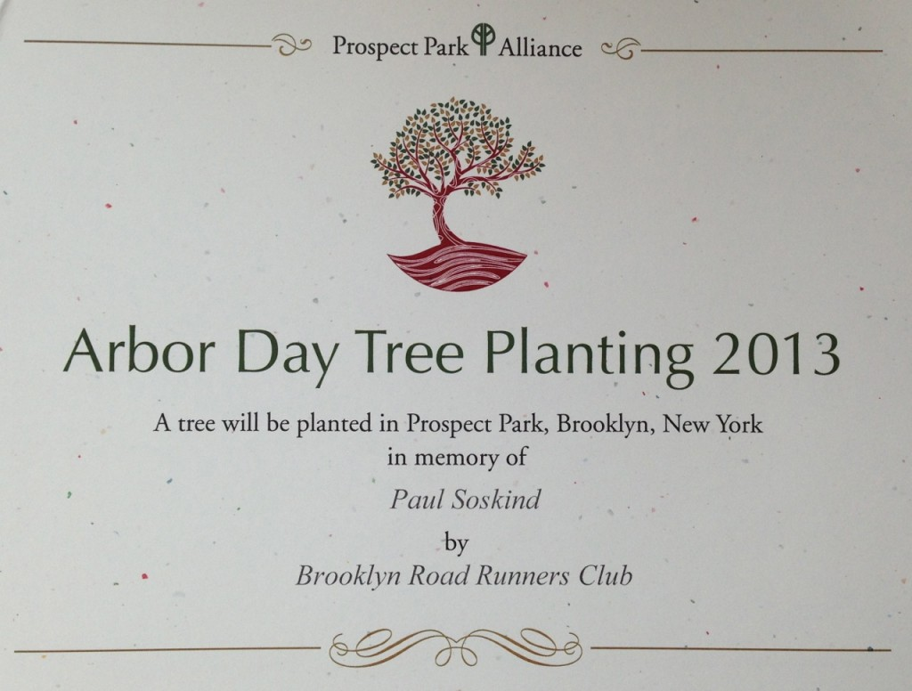 Arbor Day Paul Soskind