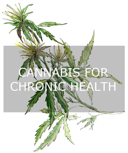 Cannabisforchronic.png