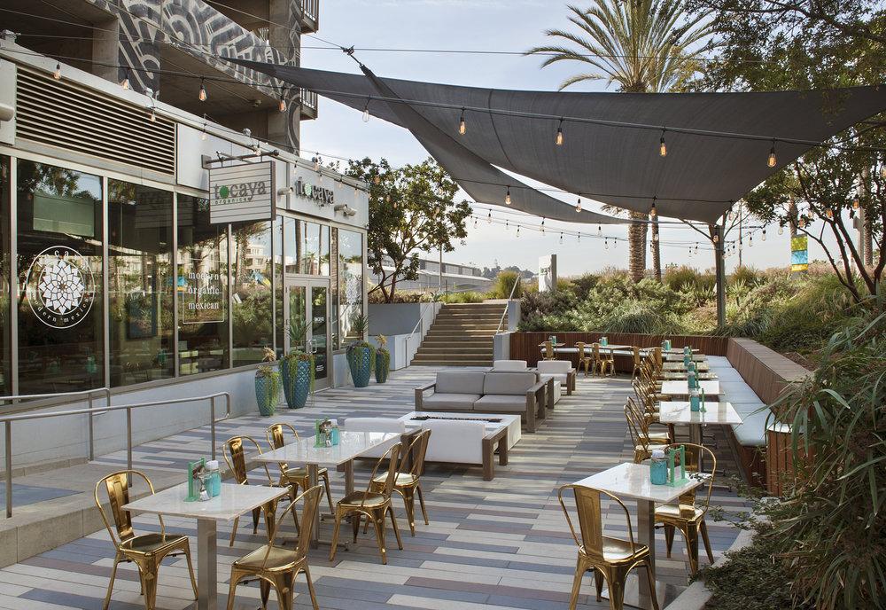 Tocaya Organica | Playa Vista