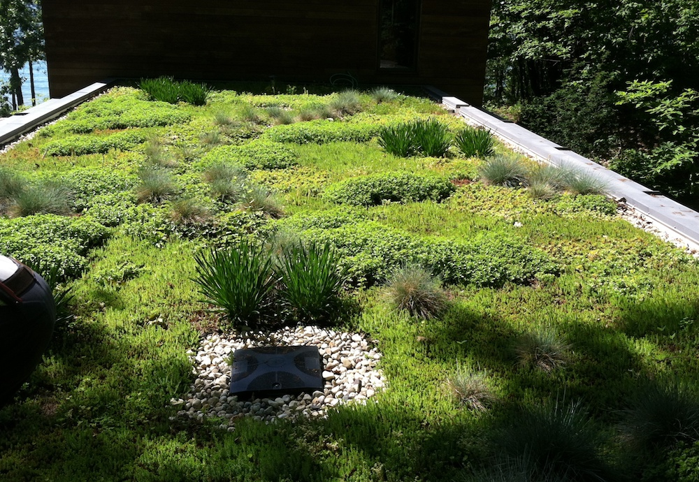 ecogardens-SW-michigan-green-roof-18.JPG