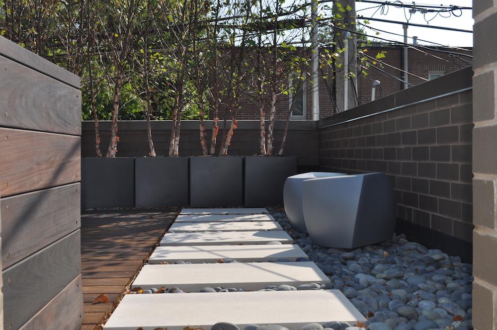 ecogardens-lincoln-park-ultra-modern-6.JPG