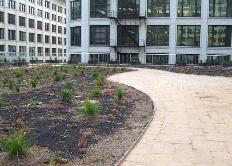 ecogardens-chicago-federal-building-8.JPG