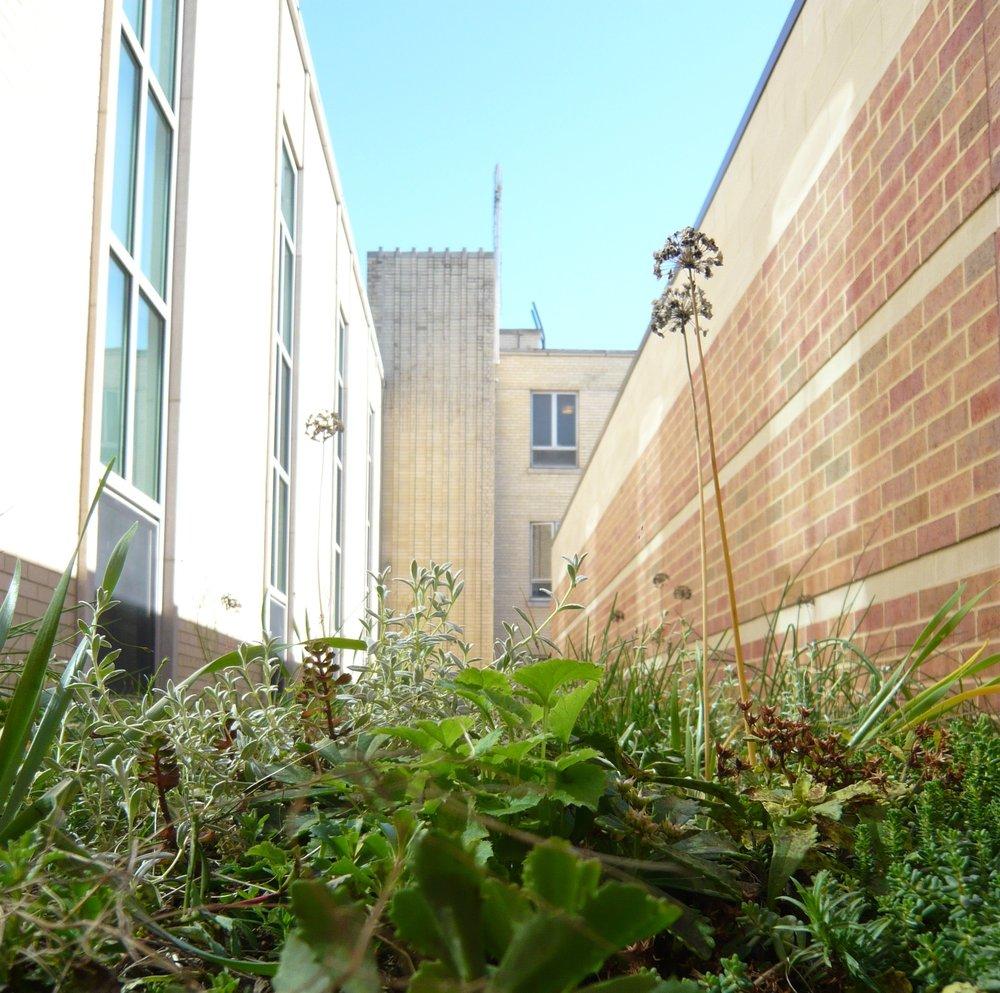 Nazareth High School