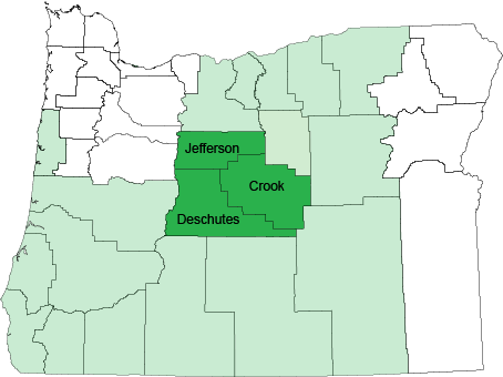 ORegon Counties Oveland Speech V2.png