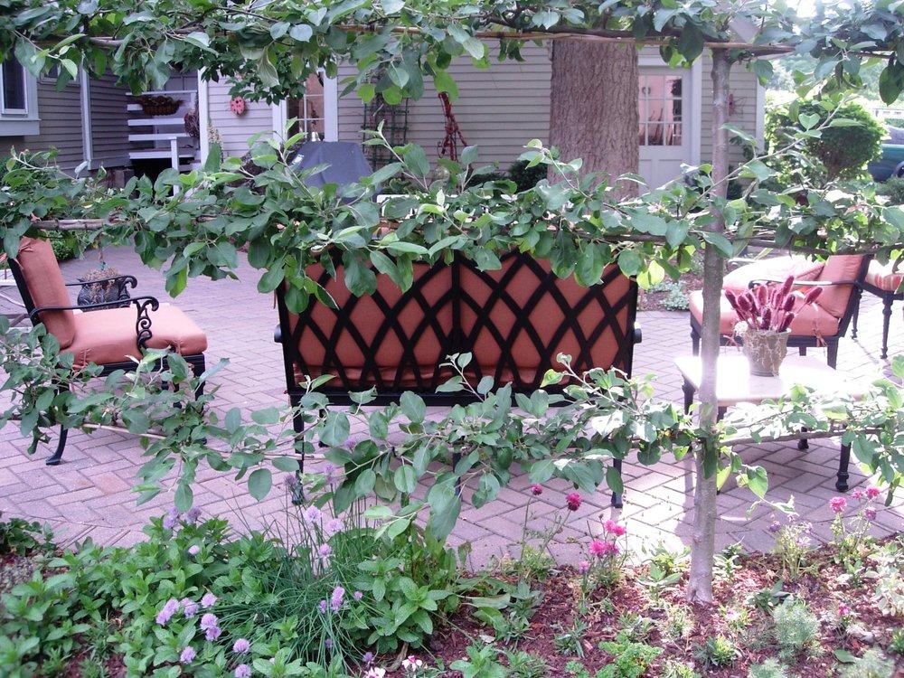 Historic home meets modern garden room using espalier fruit trees as your outdoor walls.
