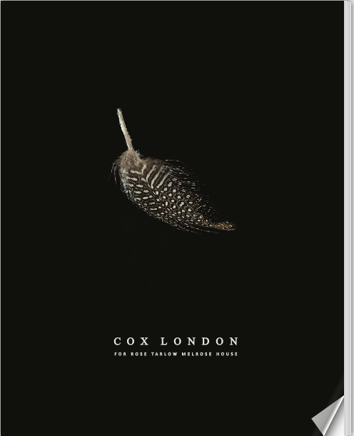 Digital Lookbook