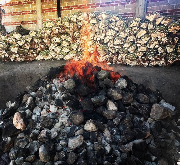 Roasting  piña  in an earthen pit