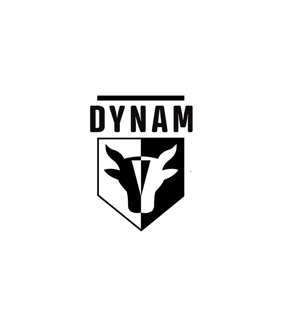 Dynam tools