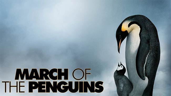 march-penguins_documentary.jpg