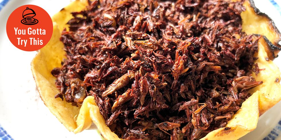 es-050818-you-gotta-try-this-chapulines-1525788279.jpg