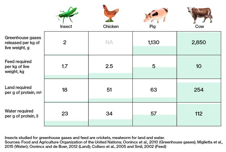 Farming's environmental impact by species