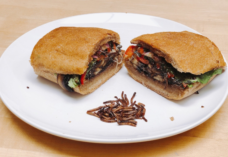 Mealworm sandwich