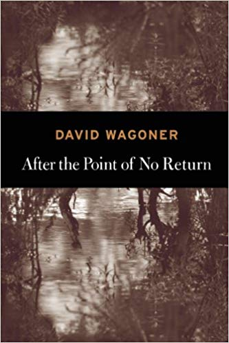 After the Point of No Return by David Wagoner.jpg