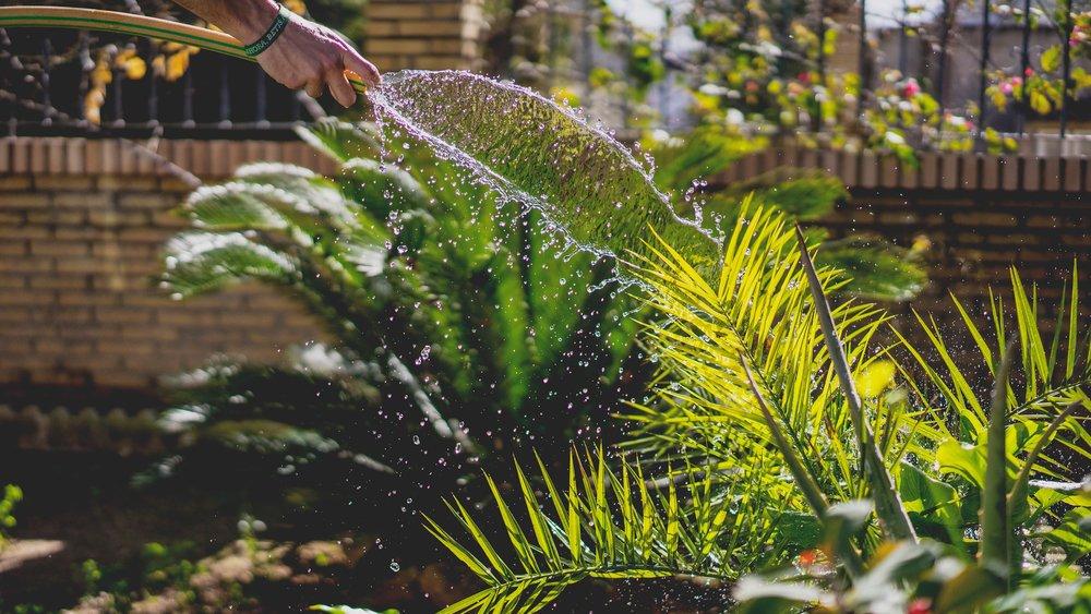 Photo by  Irene Dávila on  Unsplash