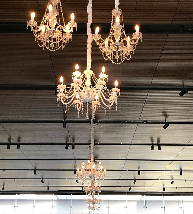 Chandeliers as far as the eye can see. Just how we like it @joondalupresort  #specialoccasionswa #chandelier #ceilingdrapes #perthweddings #perthbrides #perthevents #weddingstyling #eventstyling #wehavegotlotsofchandeliers