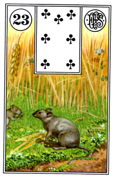 card1.png