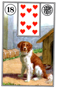 card9.png