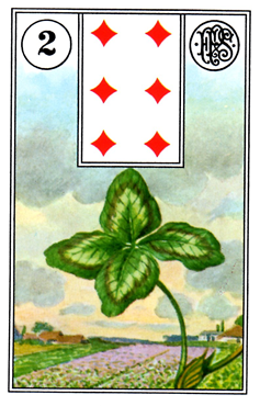 card13.png