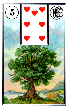 card16.png