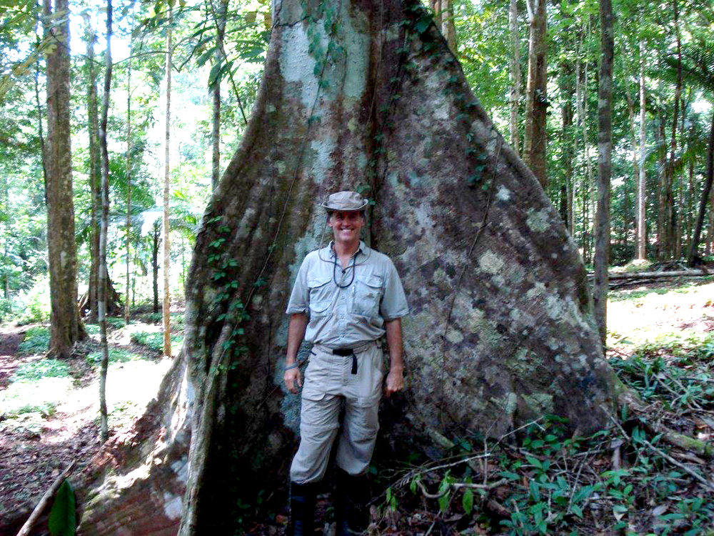 Ed Fletcher  banyon tree trunk (002).jpg
