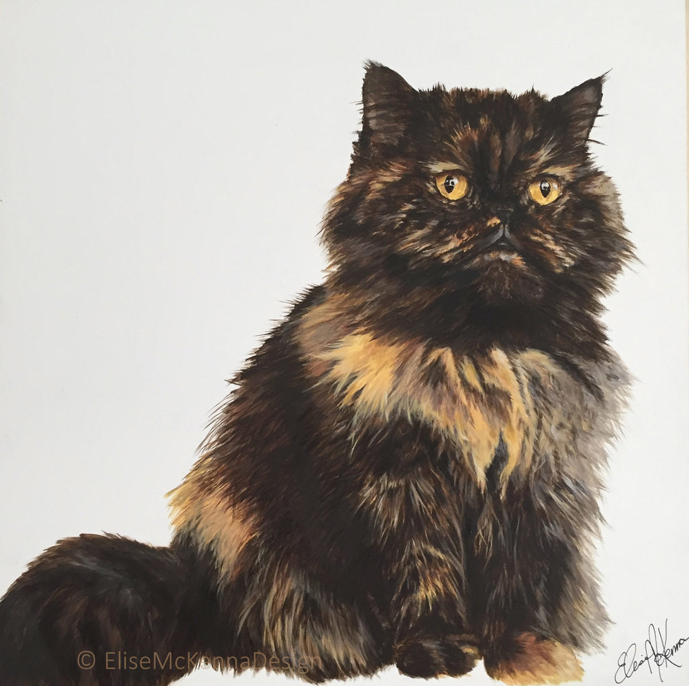 Maddie (my baby!); Persian tortie;  acrylic on mounted aquabord; 12 x 12 x 1""