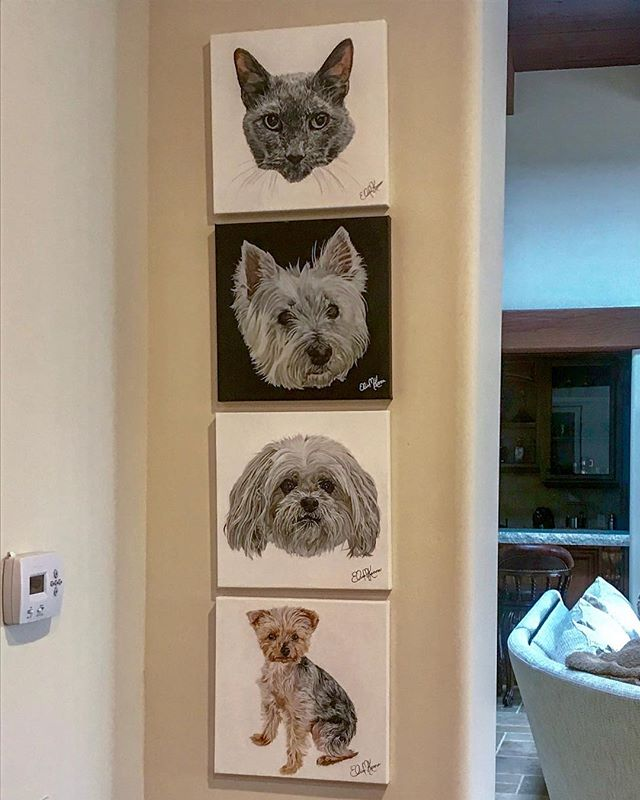 How cool is this?? I love seeing how people hang my work! The black background was a memorial gift purchased for this person who then decided to get the rest of her family pets painted for this fun wall. I love it!! #happy #wallofart #art #artist #sandiegoartist #photorealism #hyperrealism #artstagram #artoftheday #artoninstagram #artofinstagram #fineart #emergingartist #entrepreneur #selftaught #entrepreneurs #sandiegoentrepreneur #acrylicpainting #customart #instaart #instaartwork #painter #artwork #entrepreneurlife #instaartoftheday  #petportrait  #petportraitartist