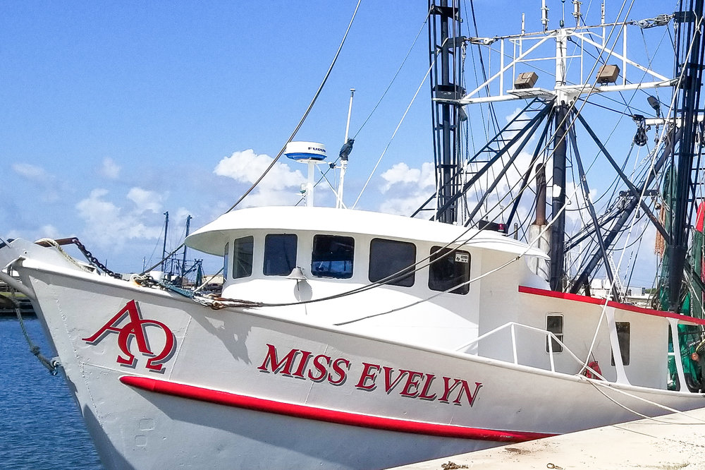 Miss Evelyn