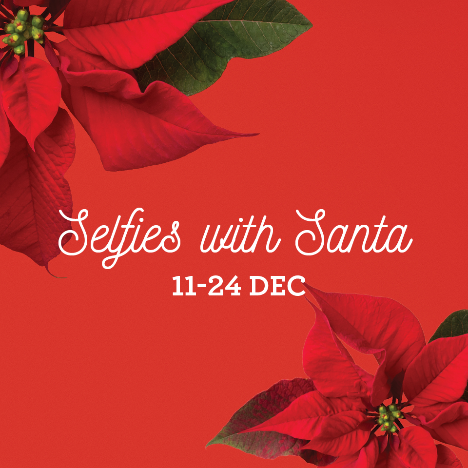 WV-SantaSelfie-FBPost.jpg
