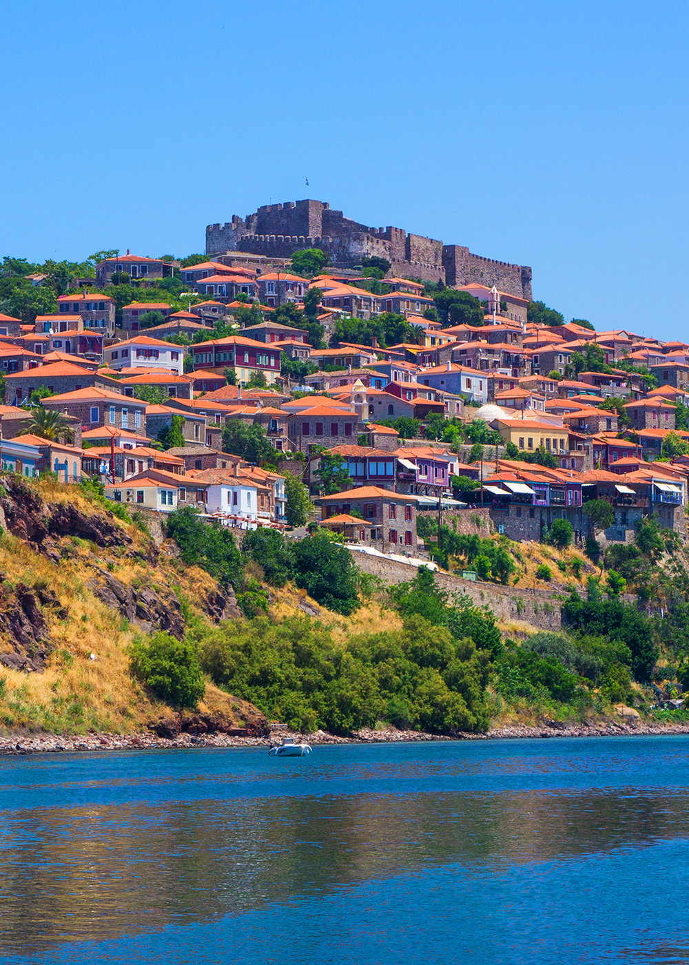 There are countless projects tohelp heal Lesvos -