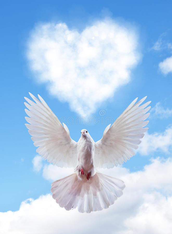 blue-sky-hearts-shape-clouds-dove-love-concept-68110442.jpg