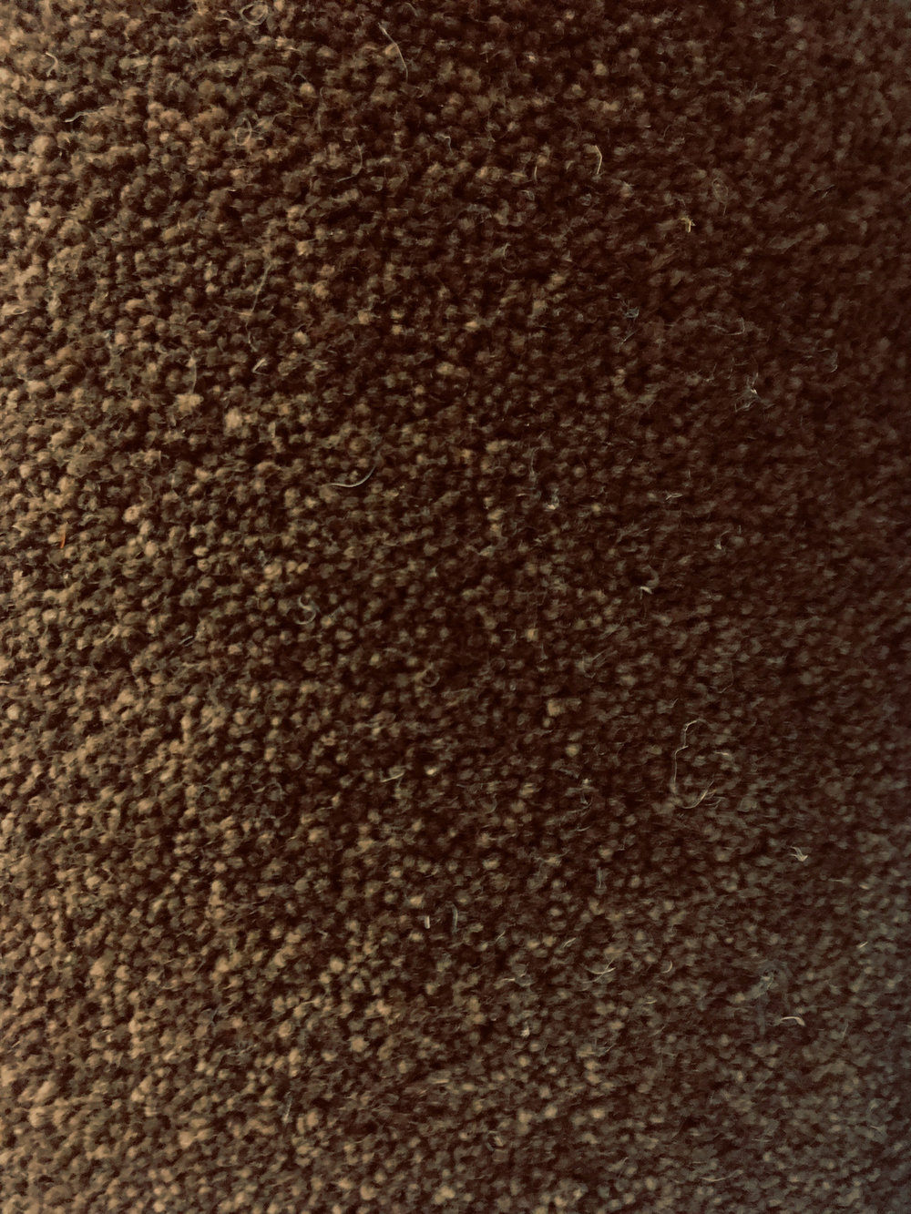 Cathedral 50oz - Colour: Latte80/20Size: 3.70 x 3.59MPrice: £172.68