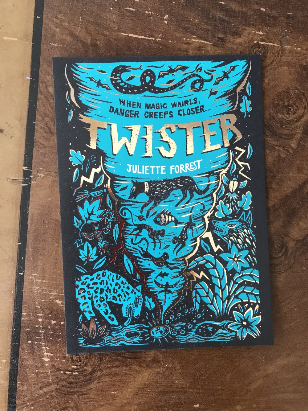 Twister longlisted for Branford Boase Award
