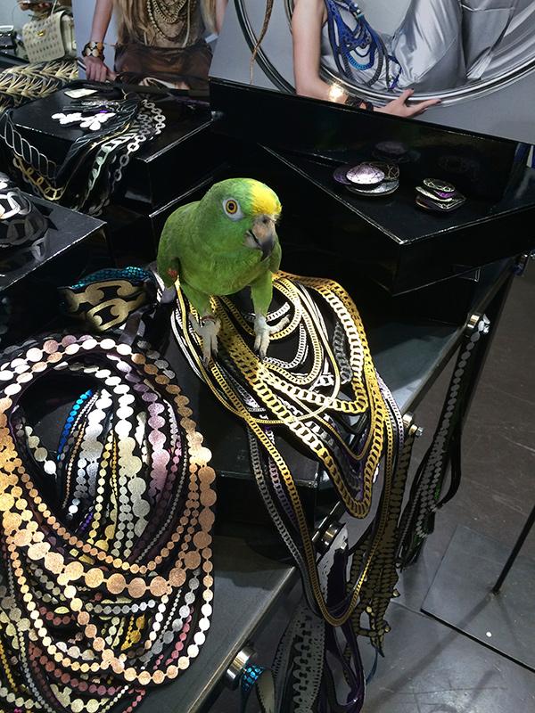 Uli-WhiteShow-MilanoFashionWeek2014-parrot.jpg