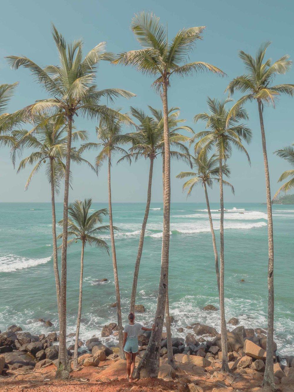 MIrissa_Beach_Sri_Lanka.jpg