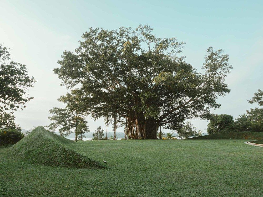 Tri_Koggala_Sri_Lanka