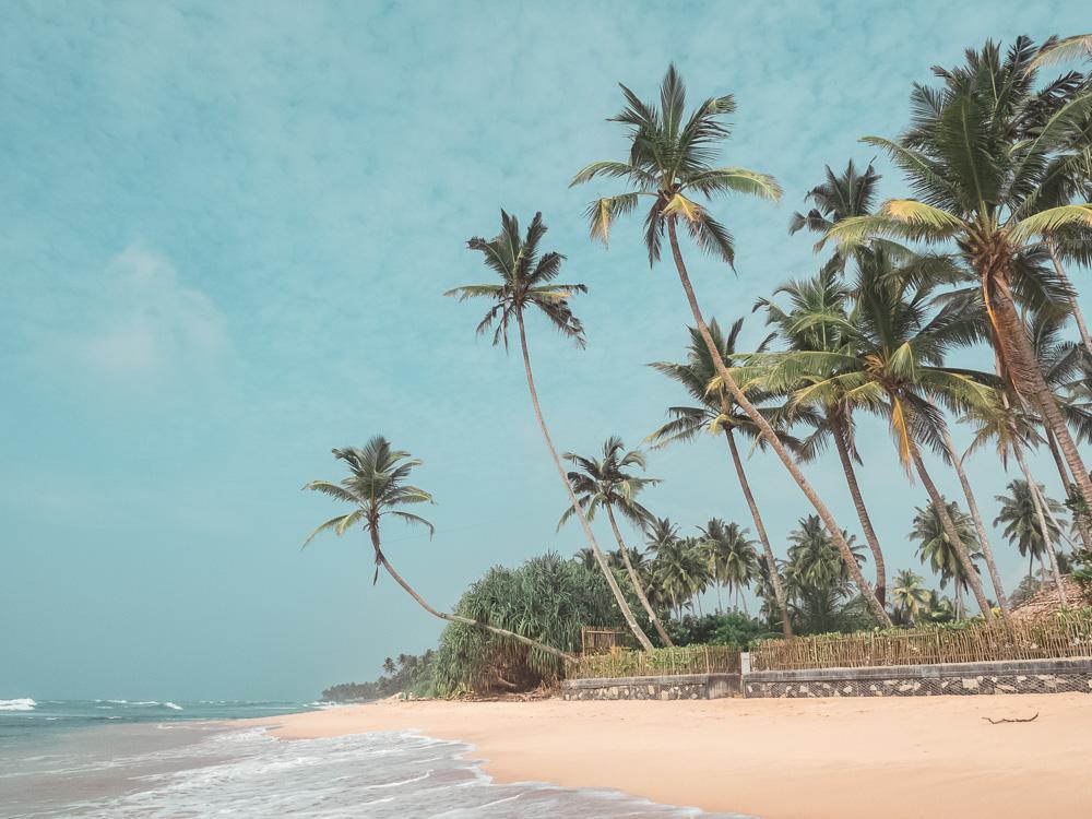 PC310149_Selection Unawatuna_beach_Sri_Lanka_JPG