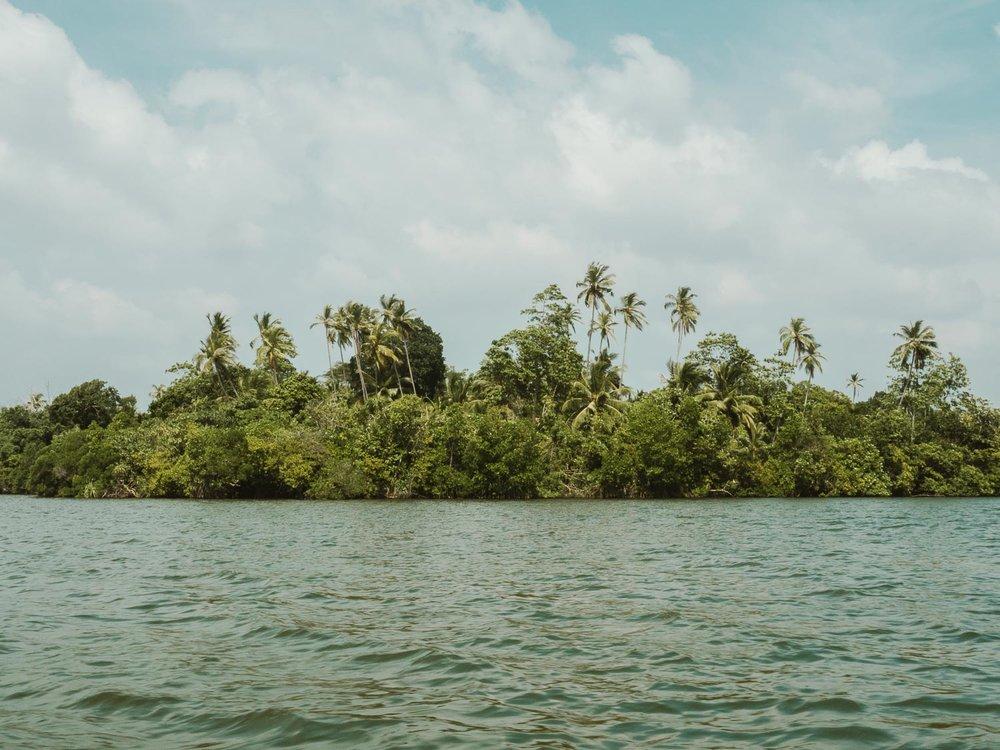 Lago_Koggala_Sri_Lanka.jpg