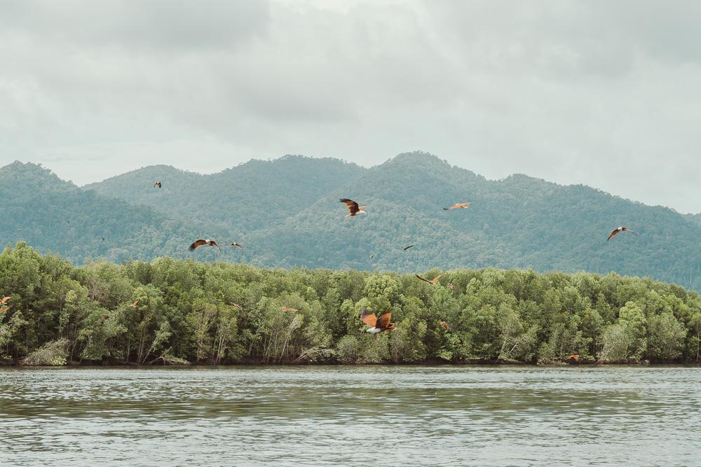 Langkawi-Malasia.jpg